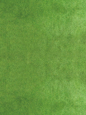world cup competition green grass background , Russian Football, World Cup Quiz, Quiz World Cup Background Background image