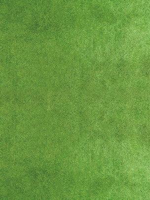 ワールドカップ大会の緑の芝生の背景 , ロシアサッカー, ワールドカップクイズ, クイズワールドカップの背景 背景画像