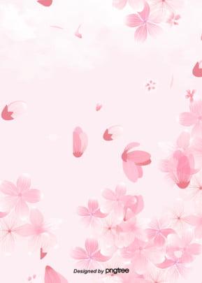 là hoa anh đào nhật bản nền màu hồng , Sáng Tạo., Hoạt Hình, Bằng Tay Ảnh nền
