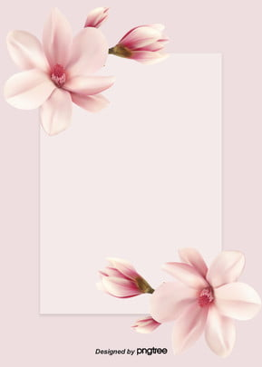 pink simple flower photography background , Valentines Day, Photography, Simple Background image