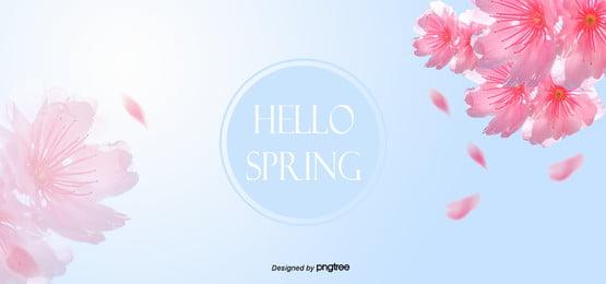 파란색 봄 벚꽃 그라데이션 배경 , 봄철, 벚꽃, 청신하다 배경 이미지