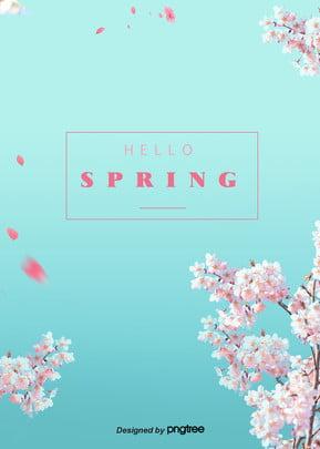 đơn giản là sáng tạo nền xanh mùa xuân hoa anh đào Mùa Xuân Vào Hình Nền
