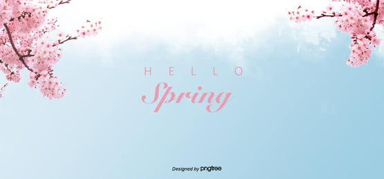 파란 봄 벚꽃 상큼한 대기 배경 , 앵두나무, 벚꽃, 낭만적이다 배경 이미지
