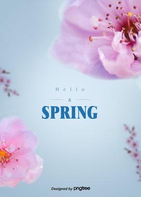 파란 봄 로맨틱 벚꽃 배경 , 아름답다., 봄철, 벚꽃 배경 이미지