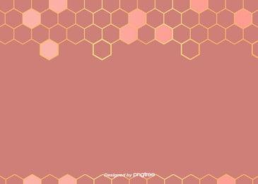 San hô màu hồng hình học đơn giản Đường dây nóng Phnom Penh tổ ong sung nền Hình Học Bắc Hình Nền