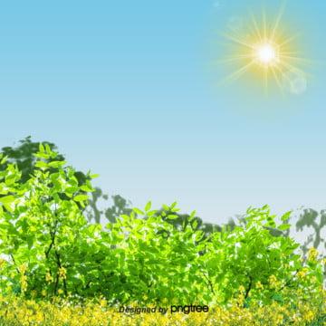 春の油菜の花の背景 , 雲の輪, 太陽, 春 背景画像
