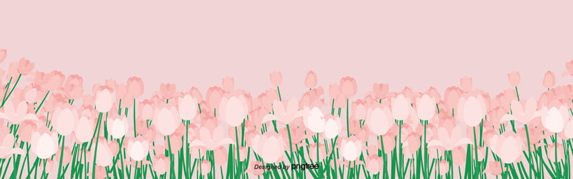 Simple Background Pictures of Pink Flowers in Spring , Cartoon, Leaf, Hand Painted Background image