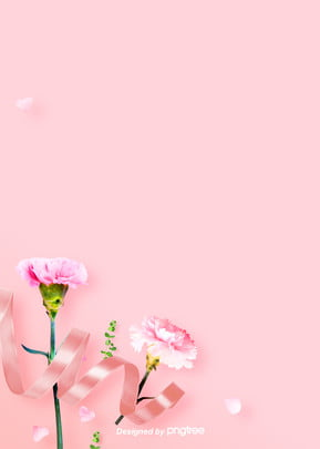 Simple warm pink carnation background picture , Carnation, Coloured Ribbon, Cozy Background image