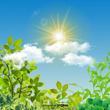 日本式共通の春の植物の背景 , 太陽, 春の植物, 春の植物 背景画像