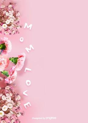 background of mothers day with pink simple carnation dry flowers , Dried Flowers, Carnation, Thanksgiving Background image