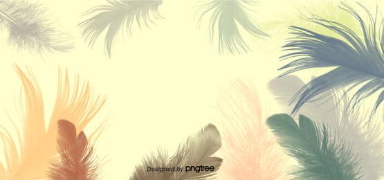 người đẹp màu nền lông bay qua , Lộng Lẫy, Xa Hoa., Màu Ảnh nền