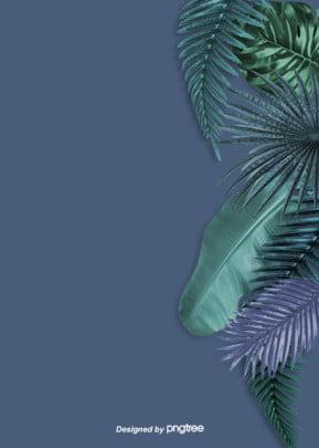 パームの葉が芭蕉の葉に重なる夏の雰囲気の背景 実を書く 積み重ねる 夏 背景画像