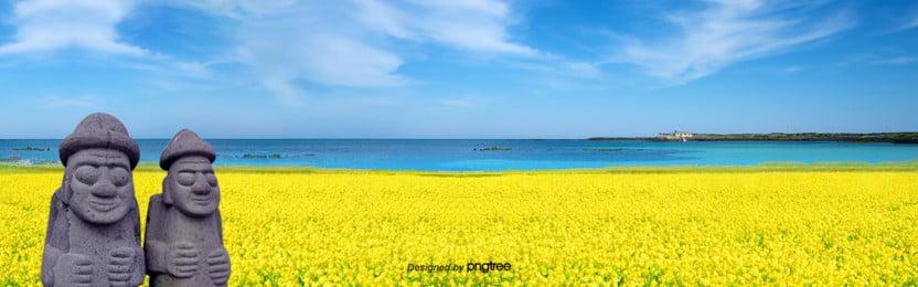 제주도 봄나물꽃 배경도 , 하늘, 작고 풋풋하다, 여행하다 배경 이미지