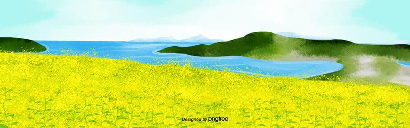 हाथ चित्रित पानी के रंग का जाजू द्वीप वसंत कनोला फूल के खेतों पृष्ठभूमि , यात्रा, वसंत, रेपसीड फूलों पृष्ठभूमि छवि