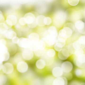 green bokeh background , Background, Backdrop, Wallpaper Background image