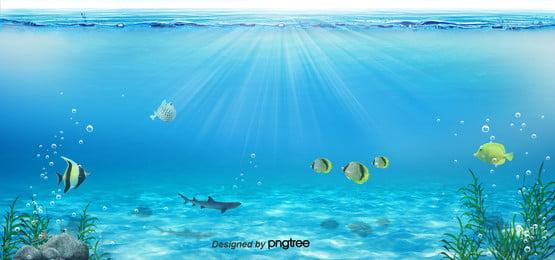no fundo no fundo , No Verão, Summer Background, Debaixo De água Imagem de fundo