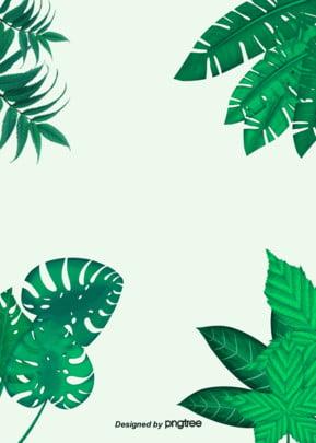 베이직한 열대 녹색 식물 배경 , 잎, 하계, 삽화 배경 이미지