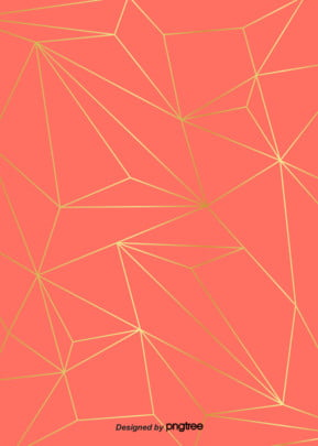 코랄 오렌지 금색 기하학의 경계선 무늬 배경 , 도안, 핑크, 오렌지색 배경 이미지