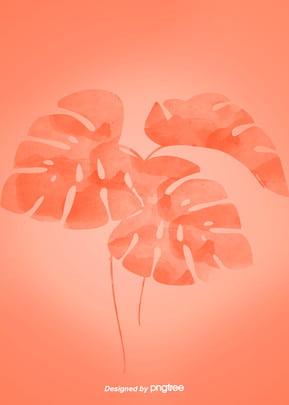 코랄 오렌지 수채 풍격 식물 배경 , 잎새잎, 식물, 식물 배경 배경 이미지