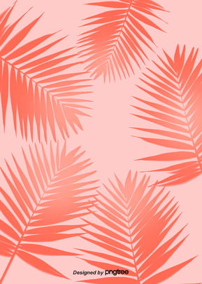 coral pink tropical plant background , Summer, Plant, Plant Background Background image