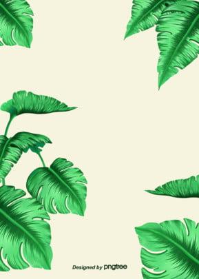 녹색 열대 식물 간략한 배경 , 하계, 식물, 청신하다 배경 이미지