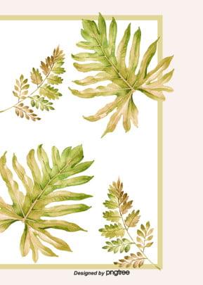 夏季熱帶植物簡約邊框背景 , 夏季, 植物, 清新 背景圖片