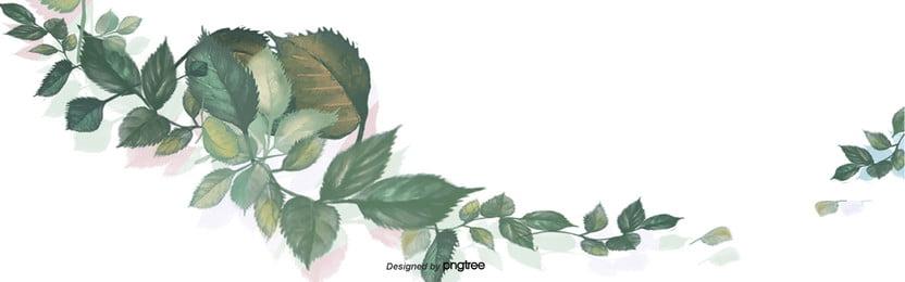 हरे पौधे हाथ चित्रित पृष्ठभूमि , कार्टून, पत्ते, हाथ चित्रित पृष्ठभूमि छवि