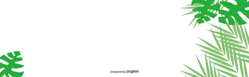 हरी उष्णकटिबंधीय संयंत्र minimalist ताजा पत्तों पृष्ठभूमि, पत्ते, संयंत्र, आकर्षक पृष्ठभूमि छवि