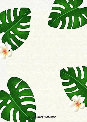 열대 녹색 식물 간략한 배경 , 하계, 식물, 열대식물 배경 이미지