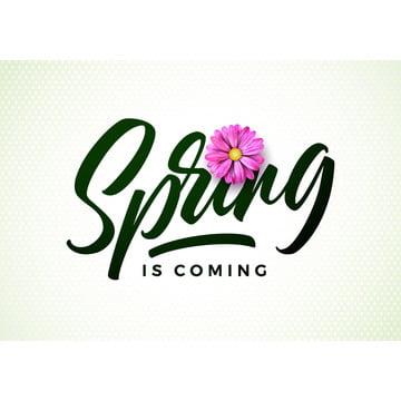 ベクトルの春は、白い背景の上に美しいピンクの花のイラストグリーティングカードやプロモーションのバナーのためのタイポグラフィレターと花のデザインテンプレート , 抄録, アート, 背景 背景画像