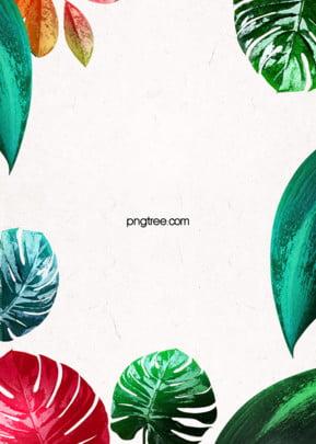 상큼한 열대 녹색 식물 간략한 배경 , 잎, 하계, 식물 배경 이미지