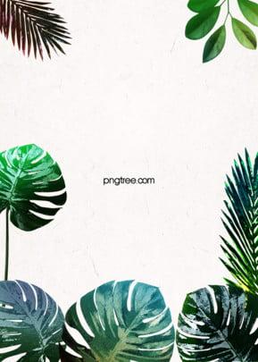 상큼한 열대 녹색 식물 간략한 배경 , 잎, 하계, 여름날 배경 이미지