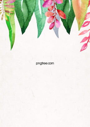 Simple Background of Hand painted Colorful Tropical Green Plants , Leaf, Summer, Color Background image