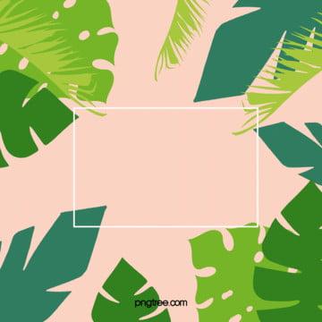 夏日棕櫚葉簡約淺色背景 , 夏日, 棕櫚葉, 淺色 背景圖片