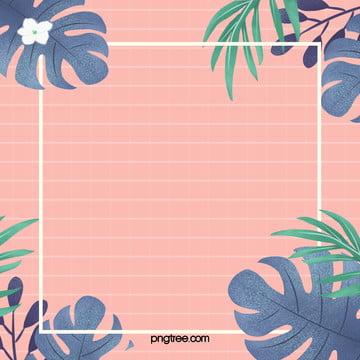 夏日熱帶棕櫚葉背景 , 夏天, 多彩, 棕櫚葉 背景圖片