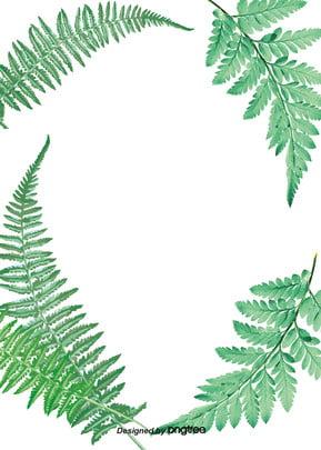summer tropical plant background , Summer, Summertime, Minimalism Background image