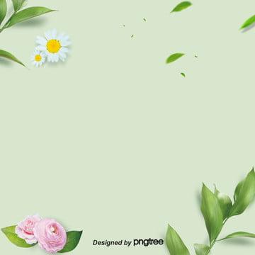 ピンクの花と植物の羽根 , 葉の切れ, 枝葉, 植物 背景画像