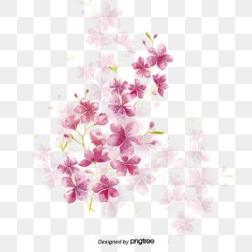粉色花朵植物花卉 , 植物, 漸變, 粉色 背景圖片