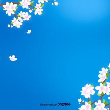 핑크 꽃가지 꽃가지 파란색 배경 , 꽃이 피다, 나뭇가지., 만개하다 배경 이미지