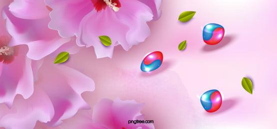 a criação do fundo de flor de hibisco, A Bandeira Nacional, Coreia Do Sul, A Nação Imagem de fundo