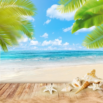 Summer Beach Background, PNG  Background, Sea, Leaves, Background image