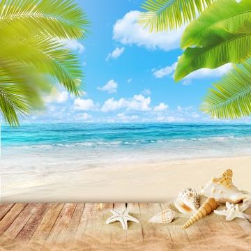 夏季海灘背景 , Pngbackground, 海, 葉子 背景圖片