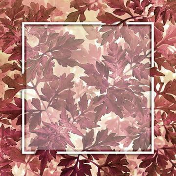 以矩形框架為中心的葉背景 , 摘要, 背景, 卡片 背景圖片