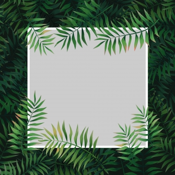 Bac pano de fundo design flat flat design floral floral background flor flower background flores green fundo verde folha folhas natural a natureza nature background palm planta plantas tropical Fundo de enquadramento Das folhas tropicais Aloha Pano De Imagem Do Plano De Fundo