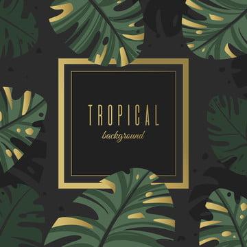帶金色裝潢的熱帶樹葉背景 , 摘要, 背景, 橫幅 背景圖片