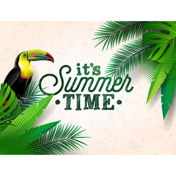 mùa hè mùa hè khung cây nhiệt đới lục địa , Ba Chiều, Không Khí., Nghệ Thuật. Ảnh nền