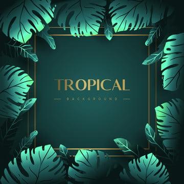 fundo de folhas tropicais verdes , Abstract, Fundo, Banner Imagem de fundo