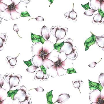 꽃 틈이 열대 잎 배경 모드 수채화 , 예술, 배경, 아름다운 배경 이미지