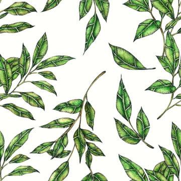葉のシームレスなパターン , 背景, 植物学, 植物学 背景画像