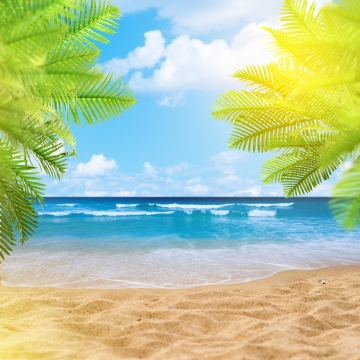 summer beach with palm leaves , Sea, Leaves, Orange Background image